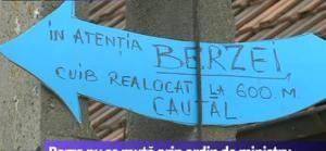 indicator_barza